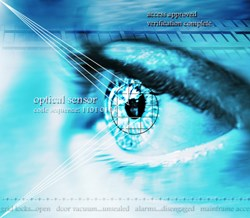 The government has dropped iris scanning - which many believe to be the most effective form of biometric technology - in order to try to reduce costs.