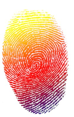 Apple's New iPhones - with Fingerprint Biometrics - Expected Today