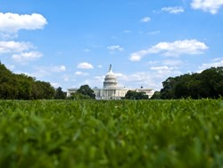 Cybersecurity and the US Senate: more hurdles and less action