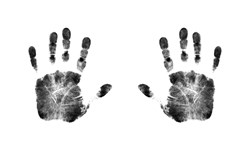 The world biometrics market has expanded exponentially