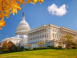 Senate Calls for Tighter Controls to Halt Malvertising Epidemic