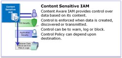 Content-sensitive IAM