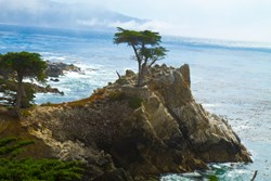 With natural beauty like this at nearby Pebble Beach, it's easy to see why Denning dreamed of a return to California
