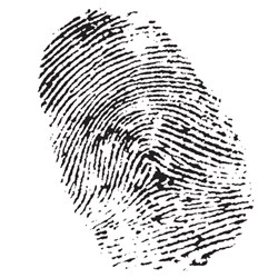 Very often a civil or employee investigation can turn into a criminal one.