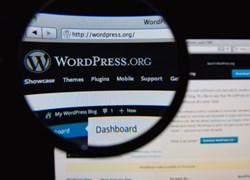 Wordpress to Implement End-to-End SSL Encryption