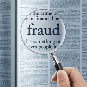 Service detective insight scam