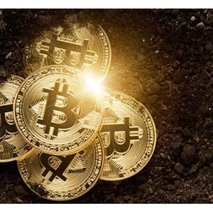 Russian cryptocurrency ponzi site