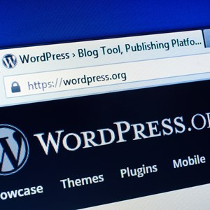 16,000 WordPress Sites Have Been Hacked