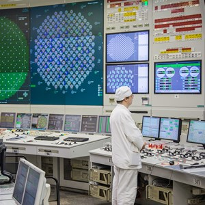 Multiple Flaws Found in Critical Nuclear Monitoring ...
