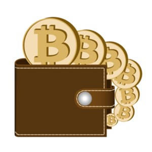 Cryptocurrency wallet in netherlands