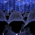 71% of CISOs Believe Cyber-warfare is a Threat to Their Organization