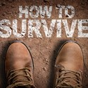An Information Security Survival Guide