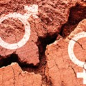 ISACA: Gender Disparity in Cyber Persists