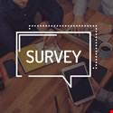 Data Governance Implementation Survey 2018