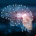 Bringing AI to Enterprise Networks
