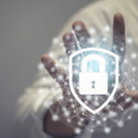 Trust Report: Measuring the Value of Security Amidst Uncertainty